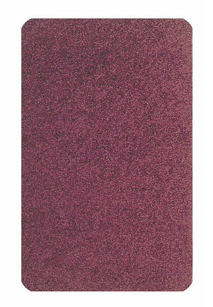 Solid Mt. St. Helens Cranberry Area Rug by Carpets for Kids