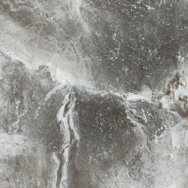 Vienna 13 x 13 Porcelain Field Tile in Strausse by Emser Tile