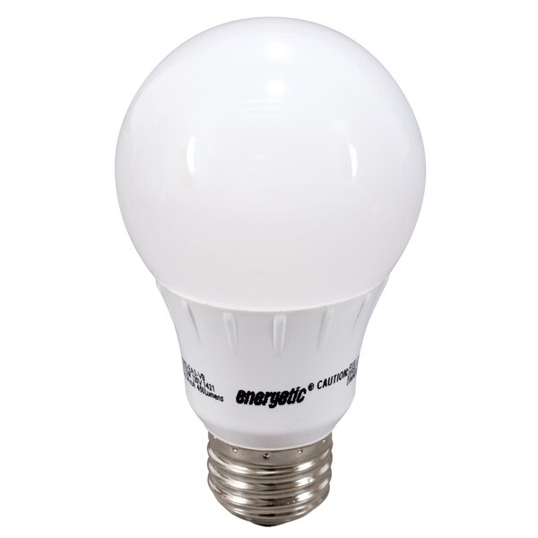 Frosted E26/Medium LED Light Bulb by Energetic Lighting