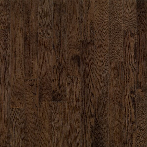 Dundee 3-1/4 Solid White Oak Hardwood Flooring in Mocha by Bruce Flooring