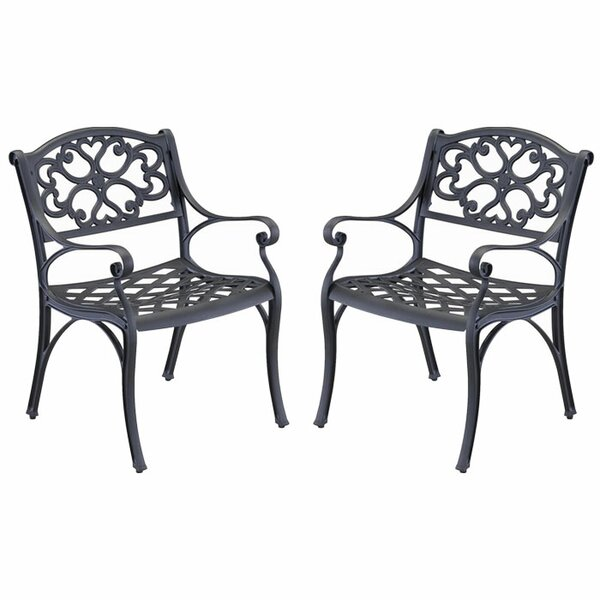 Van Glider Patio Dining Chair (Set of 2) by Astoria Grand