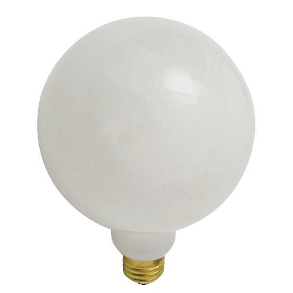 25W Incandescent Light Bulb by Nuevo