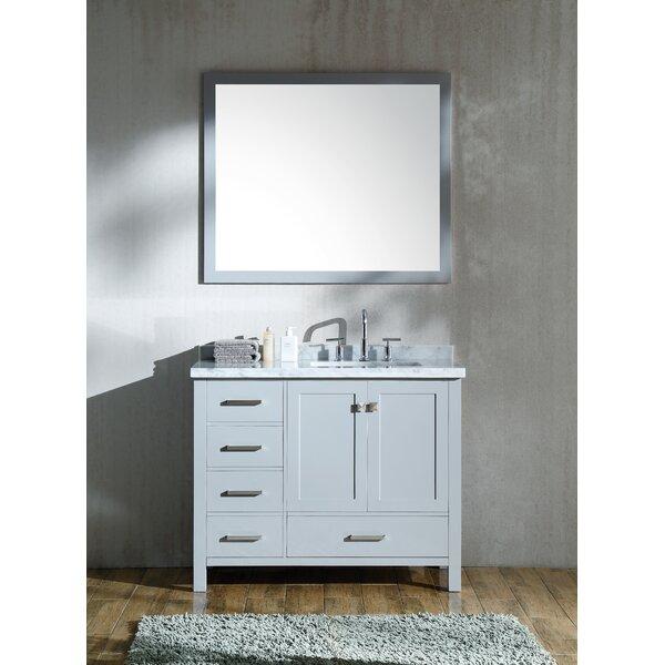 Minneota 43 Single Bathroom Vanity Set with Mirror