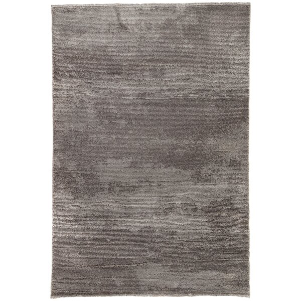 Brigette Solid Charcoal Gray/Paloma Area Rug by Orren Ellis