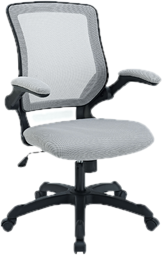 Merveilleux Ergonomic Office Chairs