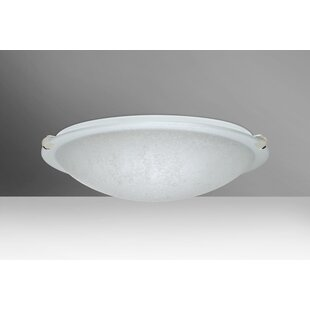 Buy clear Trio 2-Light Outdoor Flush Mount By Besa Lighting