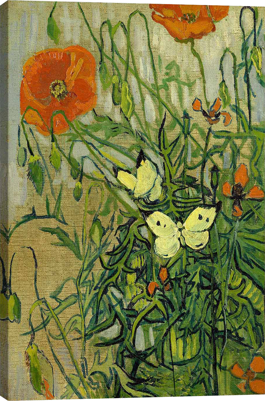 Butterflies And Poppies By Vincent Van Gogh Graphic Art Print
