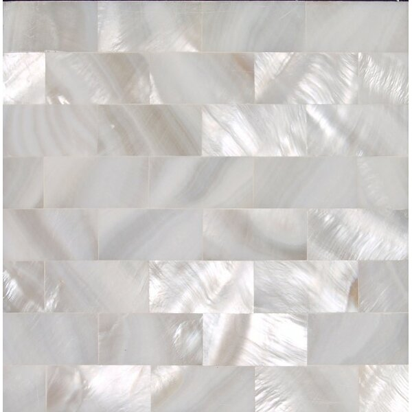 2 x 2 Authentic SeaShell Tile Seamless Brick Mosaic Insert in Un-Veined White Mother of Pearl (Set of 36) by SeaTile