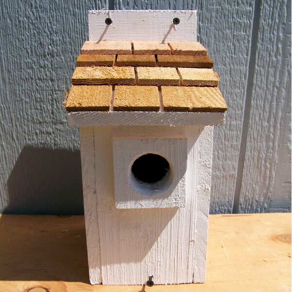 12 in x 6 in x 7 in Bluebird House by Cedarnest