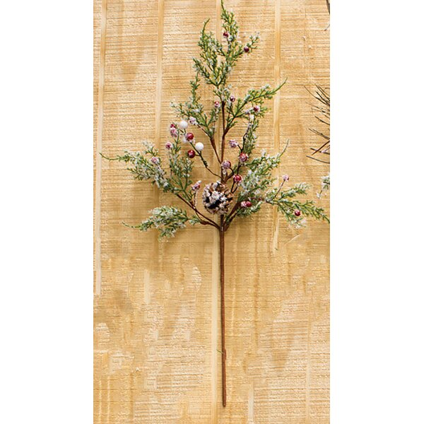 Berry Cedar Pick Stem (Set of 6) by The Holiday Aisle