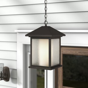 Inexpensive Olive Modern 1-Light Outdoor Hanging Lantern By Andover Mills