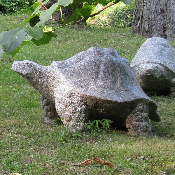 Granite Galapagos Tortoise Statue by Stone Age Creations