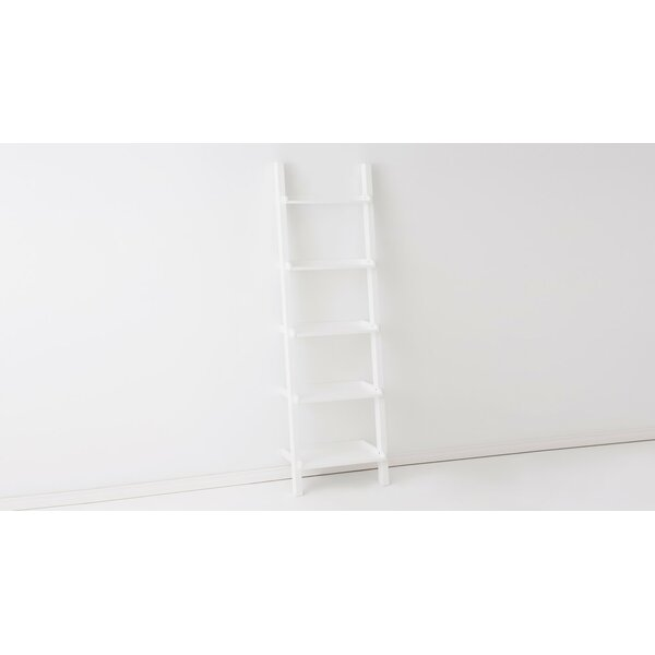 Asterix Ladder Bookcase By EQ3
