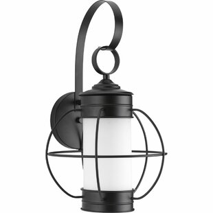 Bargain Nayeli 1-Light Wall Lantern By Breakwater Bay