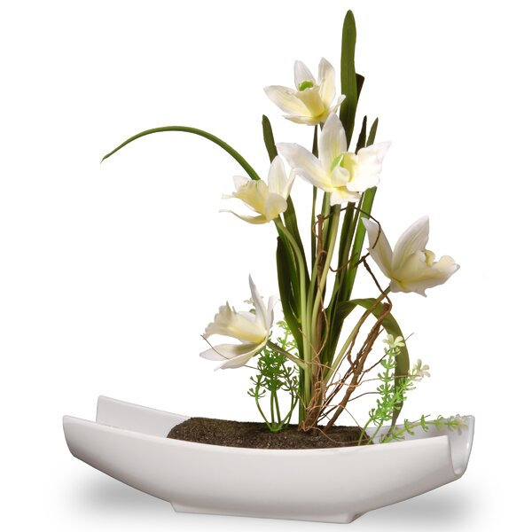 Orchid Floral Arrangement in White Planter by Orren Ellis