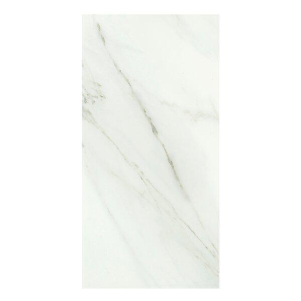 Calacata Classico 24 x 48 Porcelain Field Tile in Bone White by Casa Classica