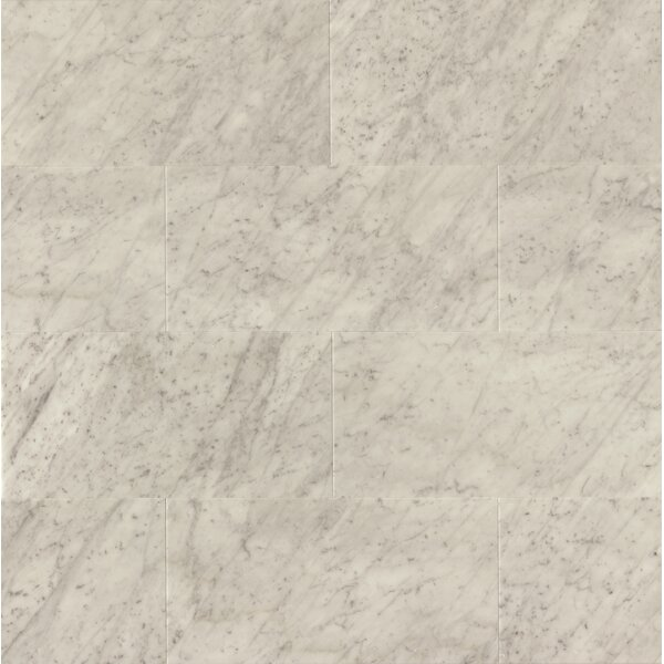 12 x 24 Honed Marble Field Tile in White Carrara by Grayson Martin