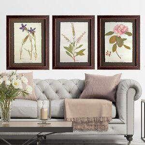 'Antique Flower Sketch' 3 Piece Framed Painting Print Set by Wexford Home