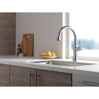 Pull Down Single Handle Kitchen Faucet Delta Finish: Arctic Stainless -  9197-AR-PR-DST