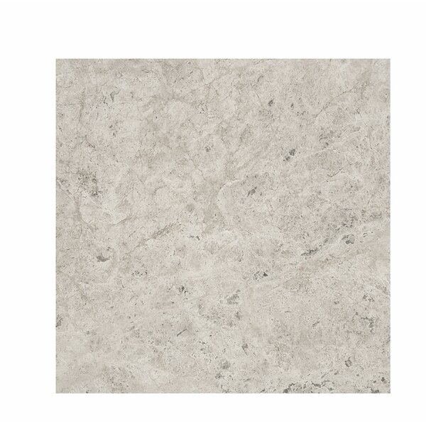 18 x 18 Marble Field Tile in Gray by Parvatile