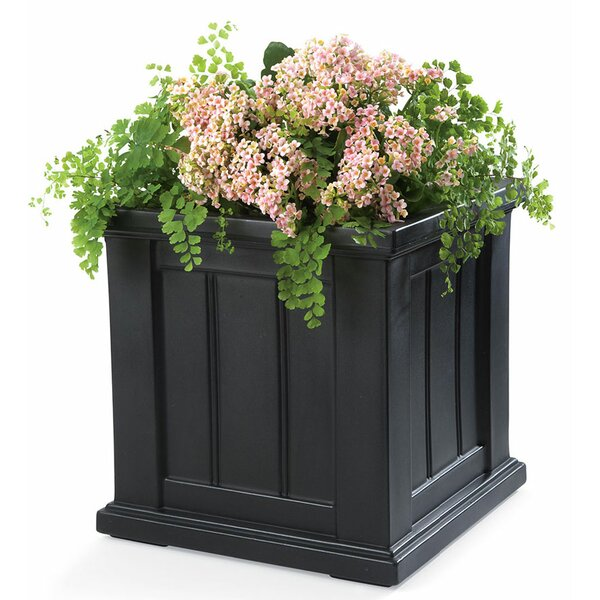 Lexington Self-Watering Planter Box by Plow & Hearth