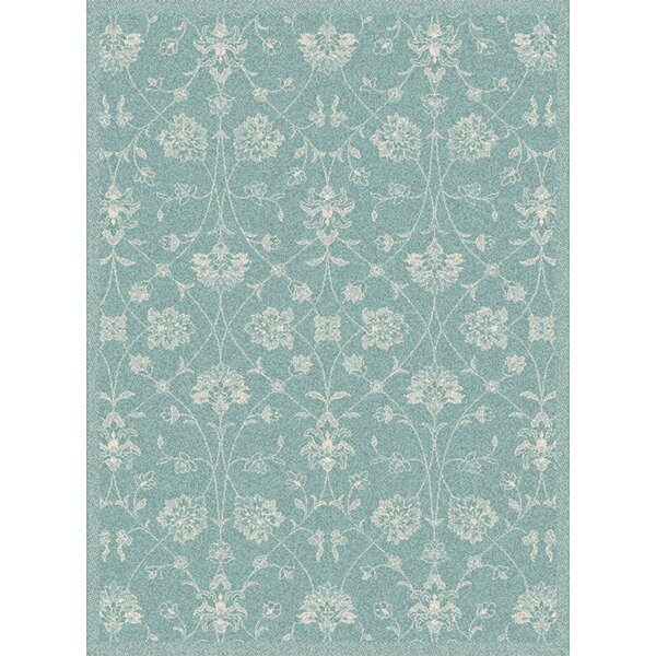 Paula Blue Floral Outdoor Area Rug by Winston Porter