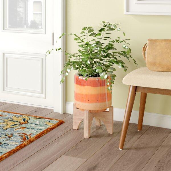 Turhan Stripes Ceramic Pot Planter by Bungalow Rose