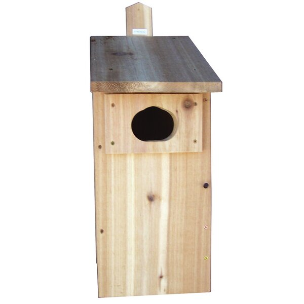 Duck Box 24 in x 14 in x 10.5 in Birdhouse by Stovall