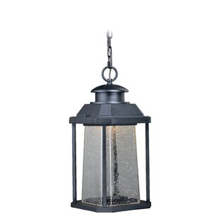 Herrell 1-Light LED Outdoor Hanging Lantern By Brayden Studio Outdoor Lighting