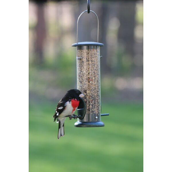 Low Cost Tube Bird Feeder by Birds Choice