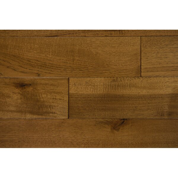 Thames 5 Solid Hickory Hardwood Flooring in Coriander by Branton Flooring Collection