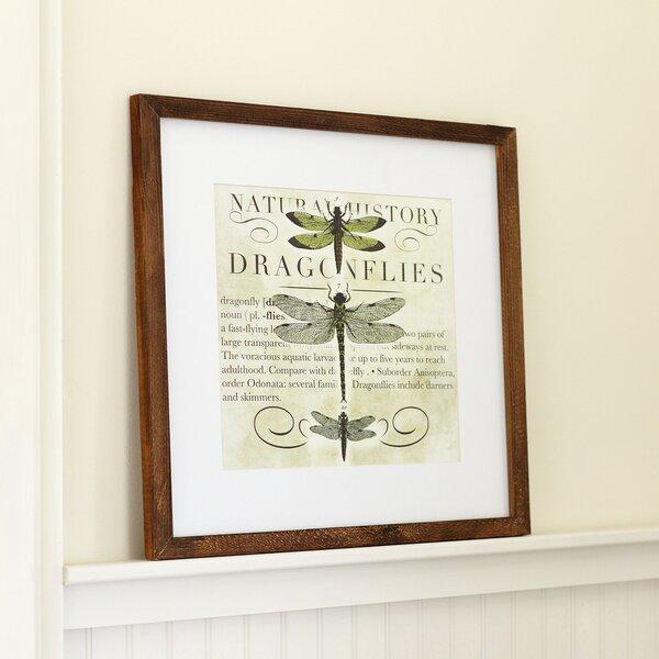Dragonfly Framed Print II by Birch Lane™