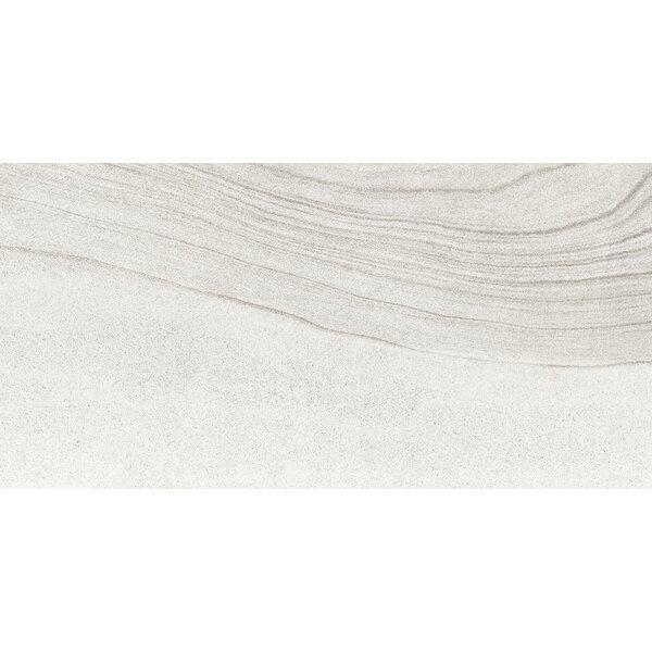 Sandstorm 12 x 24 Porcelain Field Tile in Gobi by Emser Tile