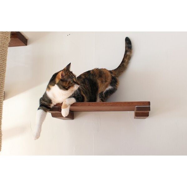 18 Cat Mod Wall-Mounted Shelf by CatastrophiCreati