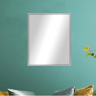 Affordable Accent Mirror ByDarby Home Co