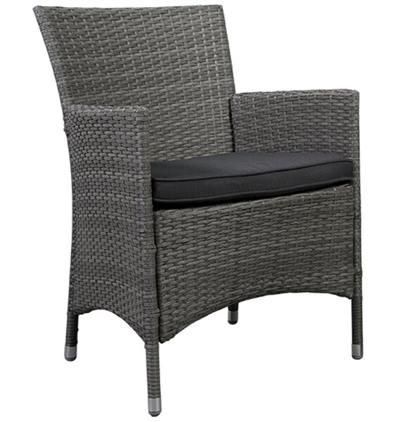 Finola Deluxe Arm Chair with Cushion (Set of 2) by Beachcrest Home Beachcrest Home