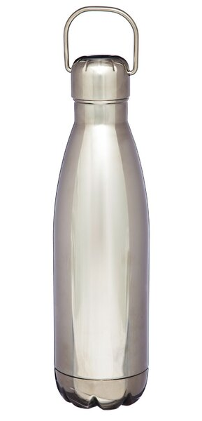 Marya 17 oz. Stainless Steel Water Bottle by Williston Forge