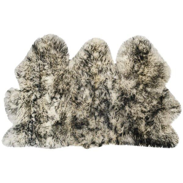 Dax Ivory / Dark Gray Area Rug by Willa Arlo Interiors