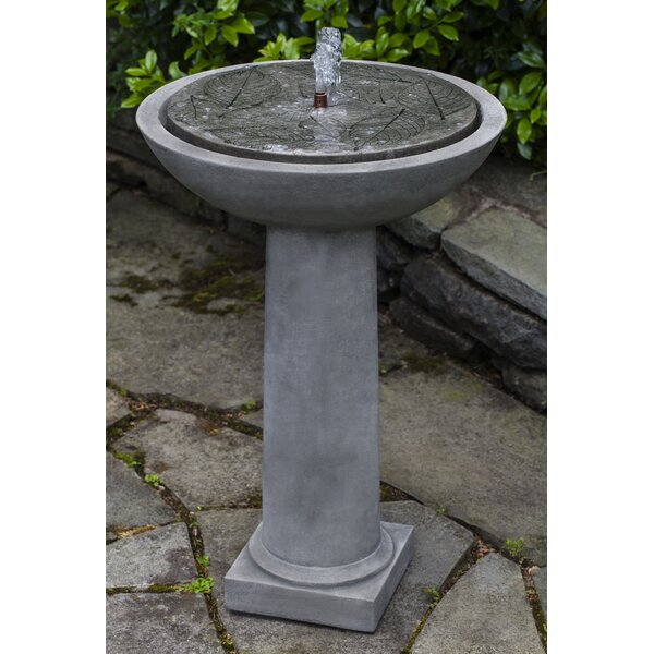Hydrangea Concrete Leaves Birdbath Fountain by Campania International
