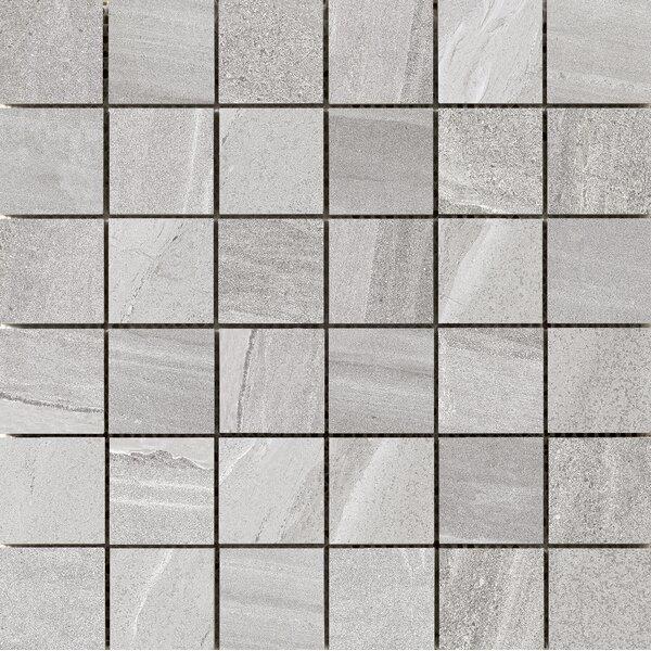 Access 2 x 2 Porcelain Mosaic Tile in Tour by Emser Tile