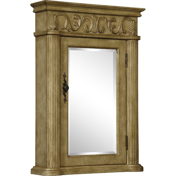 Alexis 21 x 30 Surface Mount Framed Medicine Cabinet by Astoria Grand