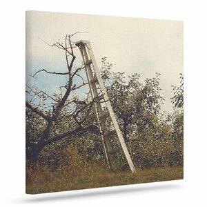 'Apple Picking' Photographic Print on Canvas by East Urban Home