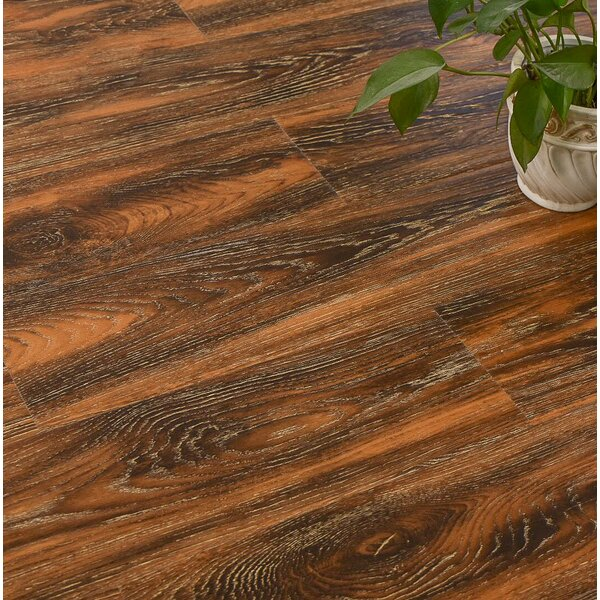 Archard 7 x 48 x 12mm Oak Laminate Flooring in Hickory by Serradon