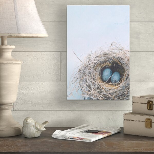 Blue Nest Photographic Print on Canvas in Blue/Gray by August Grove