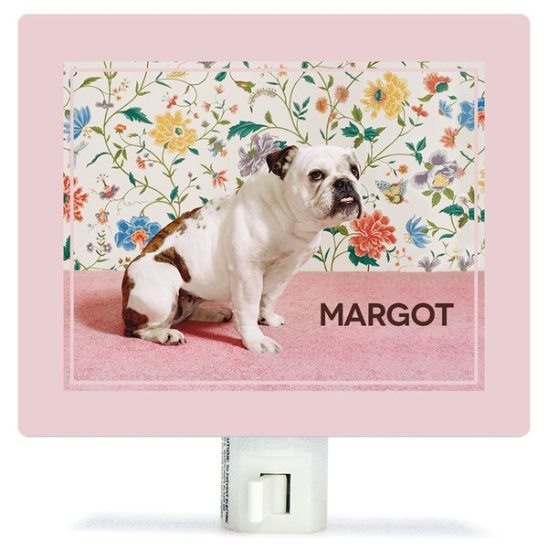 Bulldog by Catherine Ledner Personalized Canvas Night Light by Oopsy Daisy