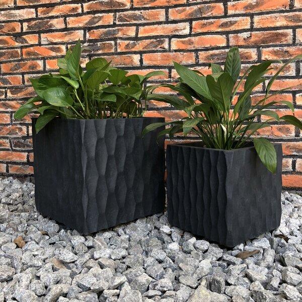 Seth Cube Rough Surface 2-Piece Concrete Pot Planter Set by Ebern Designs