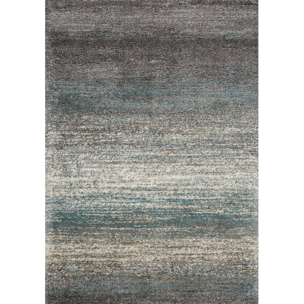 Bunderberg Gray/Blue Area Rug by Latitude Run