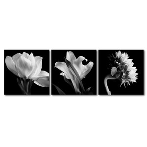 'Flower Triptych' by Michael Harrison 3 Piece Photographic Print on Wrapped Canvas Set by Trademark Fine Art