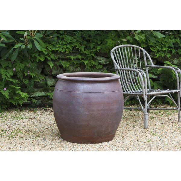 Zippelli Terracotta Pot Planter by Red Barrel Studio