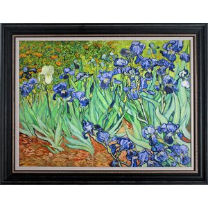 'Iries' by Vincent Van Gogh Framed Painting Print on Wrapped Canvas by Wexford Home